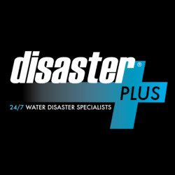 Disaster Plus